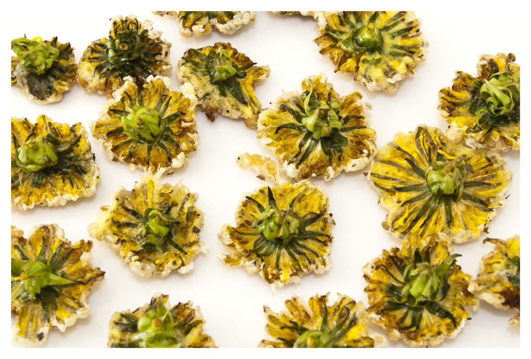 Edible Flowers 5 Flowers You Can Eat